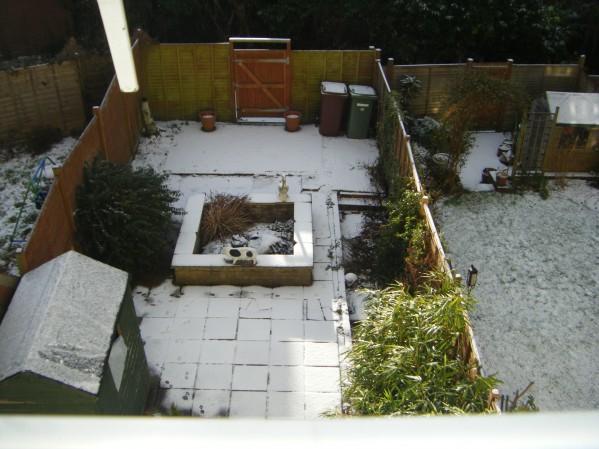 Sn-Snow!
