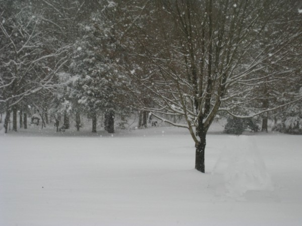 lol snow.