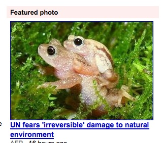 Frog sex damaging the environment