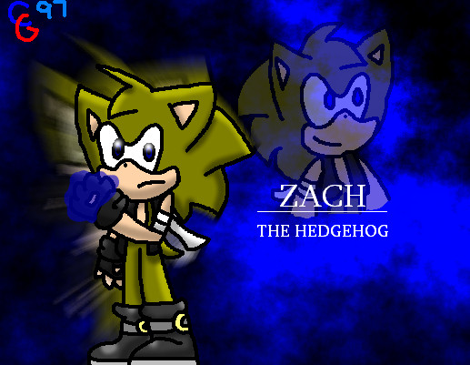 [insert name here] the hedgehog