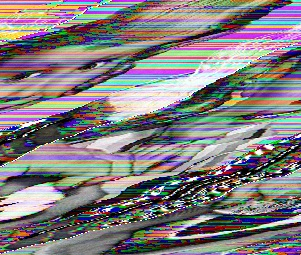 How To Make Glitch Art!