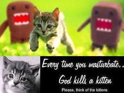 Kitten masturbate kill