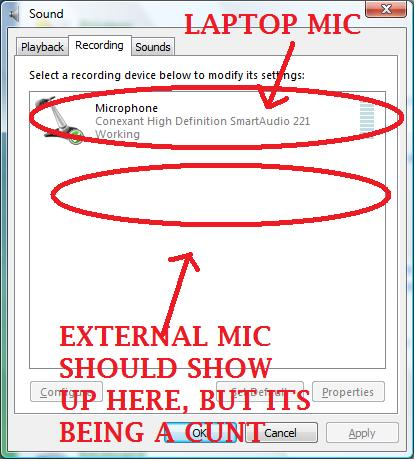 external mic doesnt work on laptop