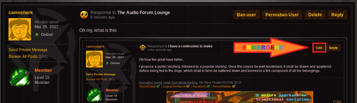 The Audio Forum Lounge