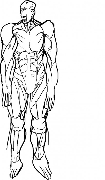 anatomy help thread