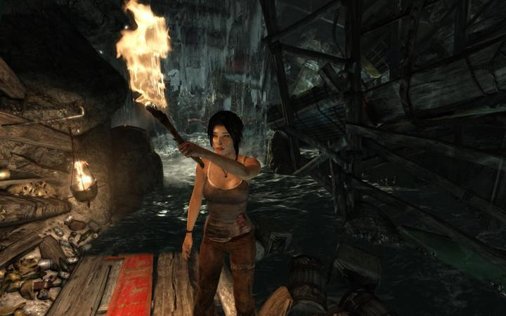 Tomb Raider pc version is Next Gen