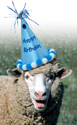 Happy Birthday Thehappysheep