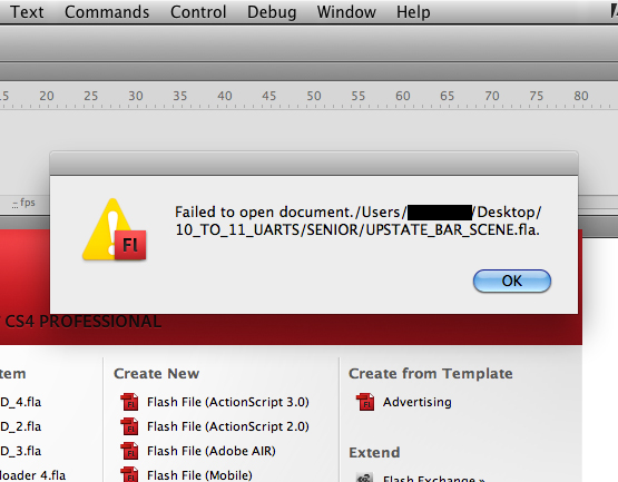 how to open a flash file