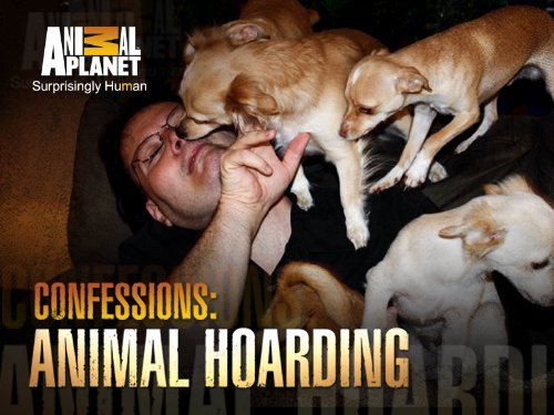 Talking to pets a form of insanity?