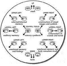 My Eye Movement Theory
