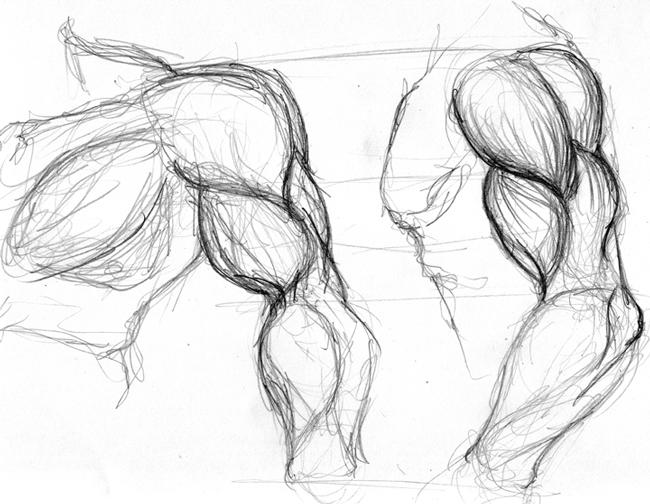Muscles N' Bones: Activity Thread
