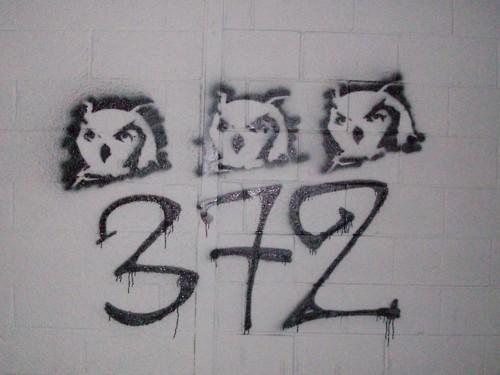 372's Artistic Manifestations