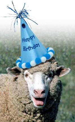 Happy Birthday Thehappysheep
